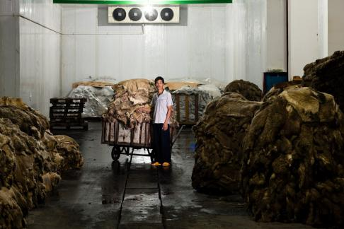 The Enaga Fur Factor in Chongfu, Zhejiang Province, China and trades under the name 'Zhejiang Zhonghui Fur & Leather Co., Ltd. The factory itself sources furs from all over the world including Canada, using pelts from the North American Fur Auction (NAFA).